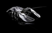 Georg Hornemann | Creatures | FALC | Silber